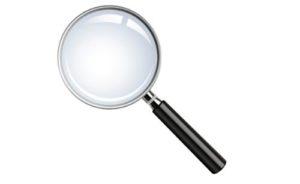 SEO Full Citation Audit